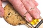 cookiejar_1801